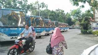 Dishub Pekanbaru : Khusus Hari Ini, Bus TMP Beroperasi Sampai Magrib