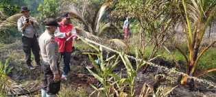 3 Hektar Lahan Terbakar Berhasil Dipadamkan BPBD Pekanbaru