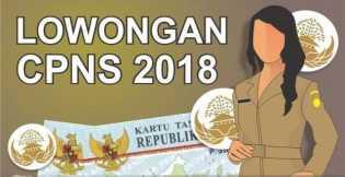 Penerimaan CPNS 2018 Dibuka, 19 September 2018 portal SSCN BKN Siap Diakses Pelamar